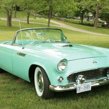 100-Thunderbird 1955